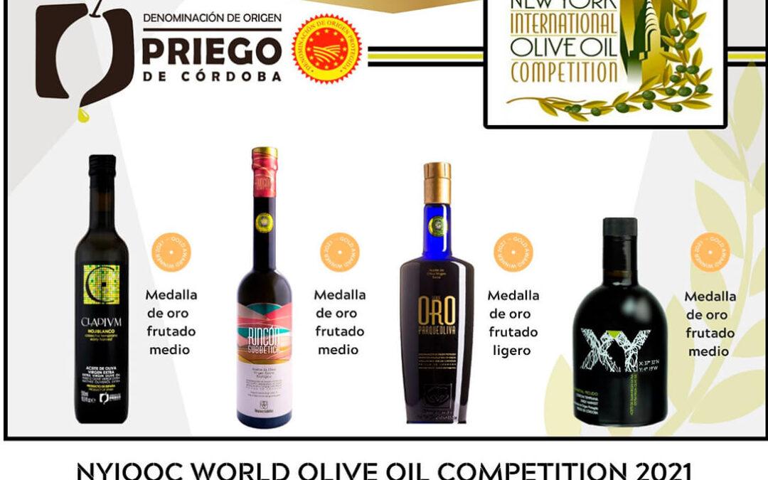 De Nueva York a Italia, los aceites de oliva de la DOP Priego de Córdoba arrasan con nuevos premios