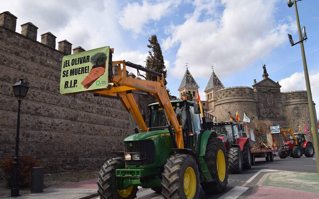 Tractores contra los daños de Filomena en el olivar, viña, pistacho y almendro para pedir responsabilidad y voluntad política