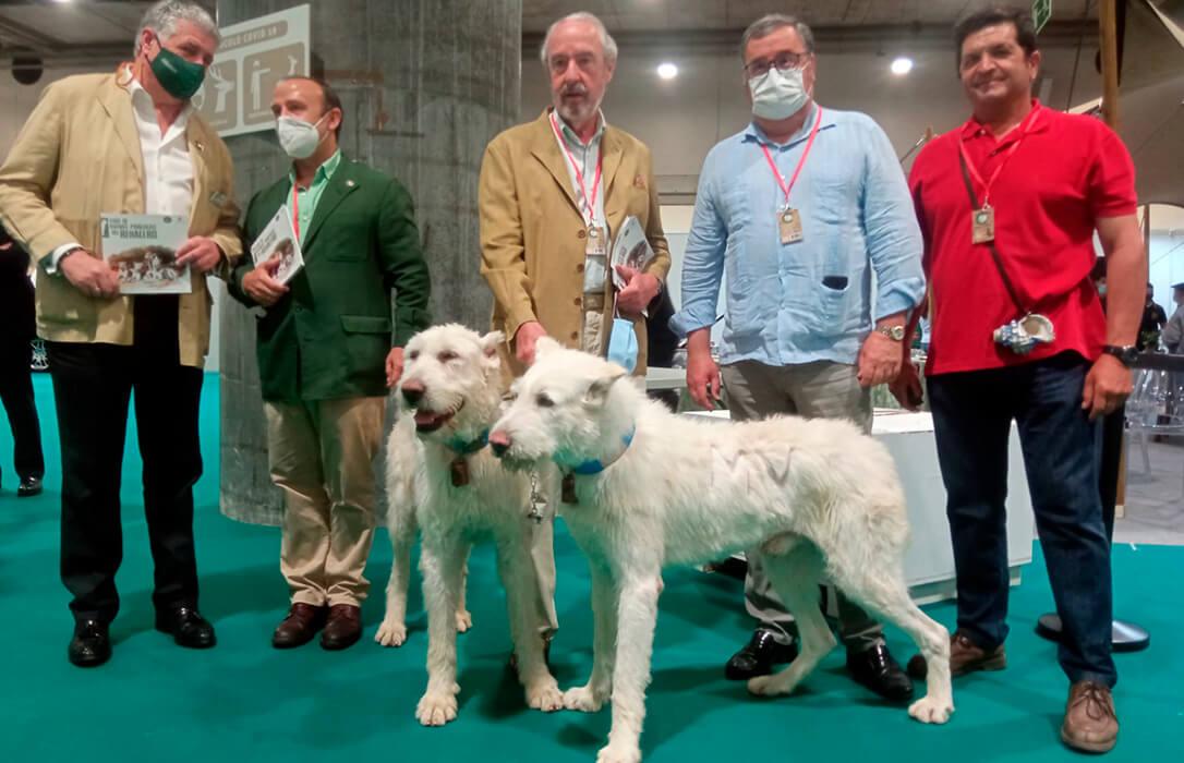 Presentada la Guía de Buenas Prácticas del Rehalero en materia de bienestar animal