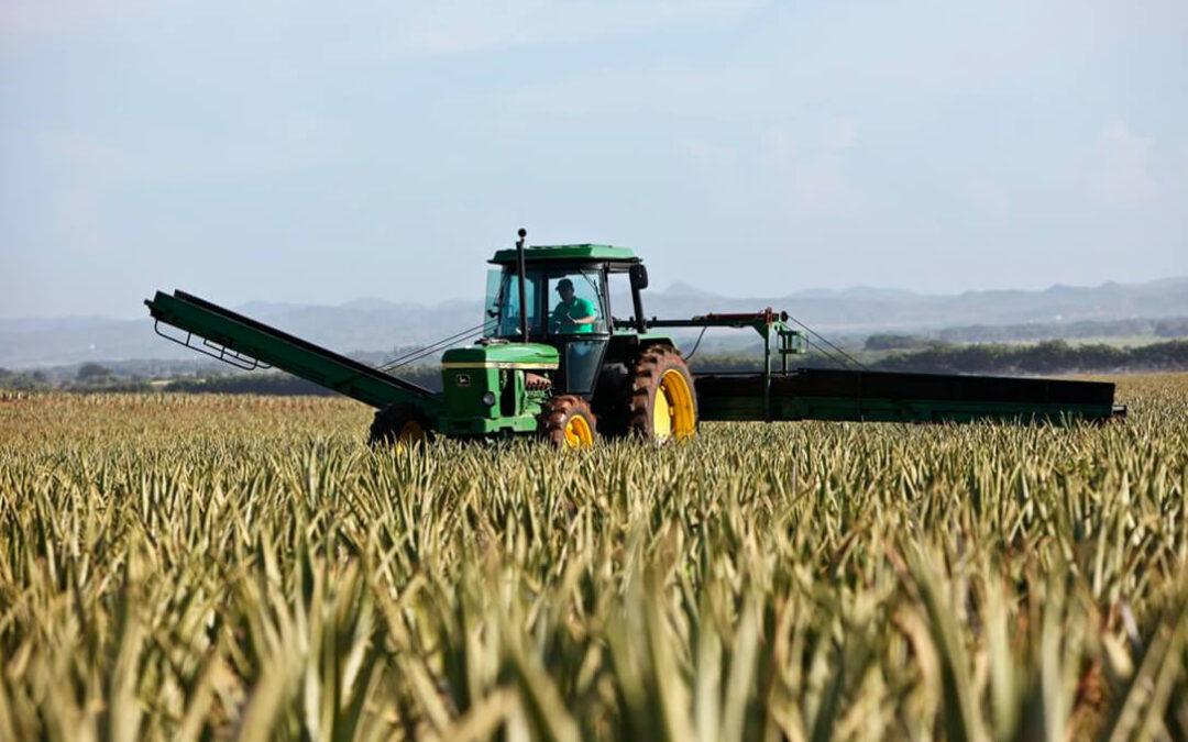 Aragón garantizará por ley la protección y el apoyo «real y no retórico» al modelo de agricultura familiar
