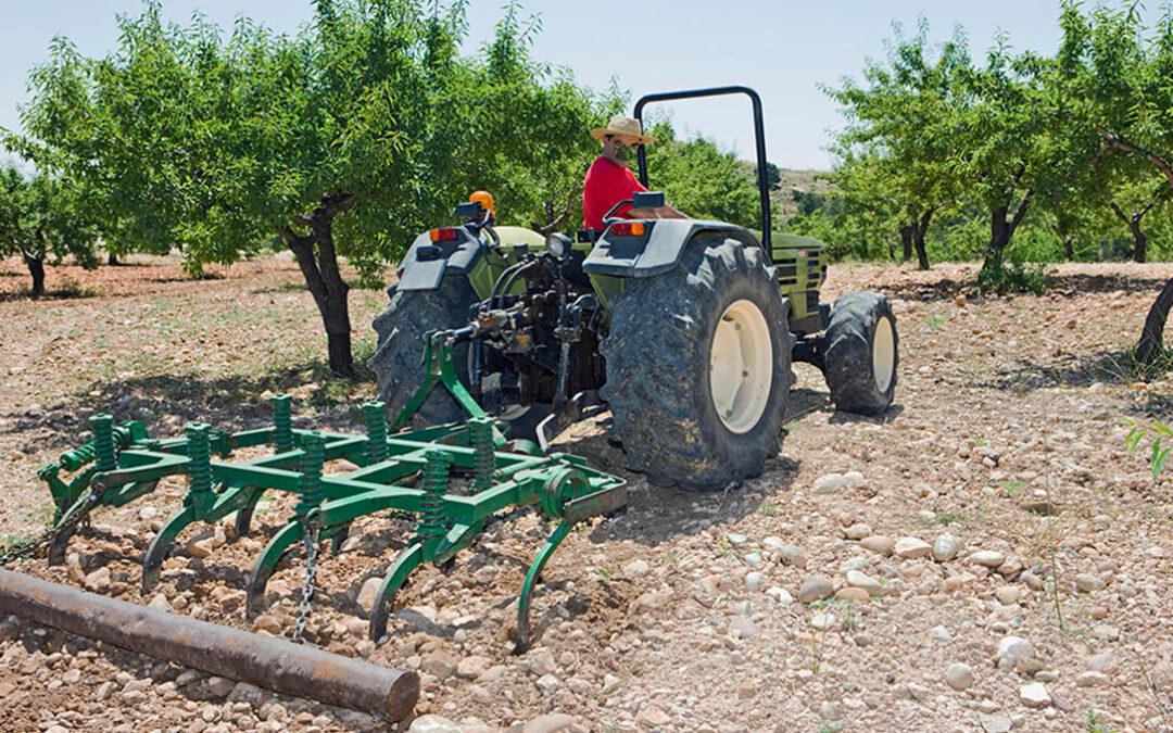 Planas admite que el debate de la PAC se ha convertido en «cansino» pero espera un acuerdo que priorice a la agricultura familiar