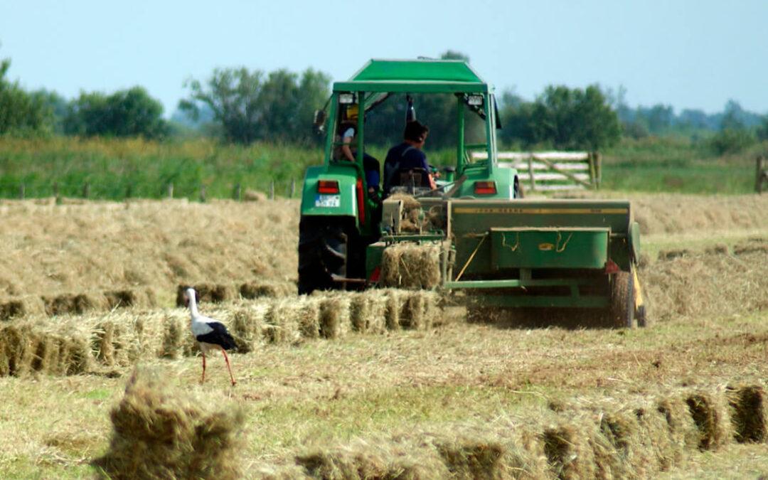 Debate de la PAC en Europa: La ministra de Agricultura alemana critica al responsable del Pacto Verde por su papel ante la negociación