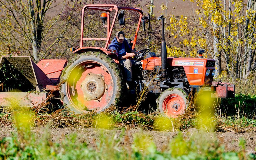 Debate de la PAC en España: Planas abre la puerta a que el agricultor pluriactivo entre en la definición de agricultor genuino