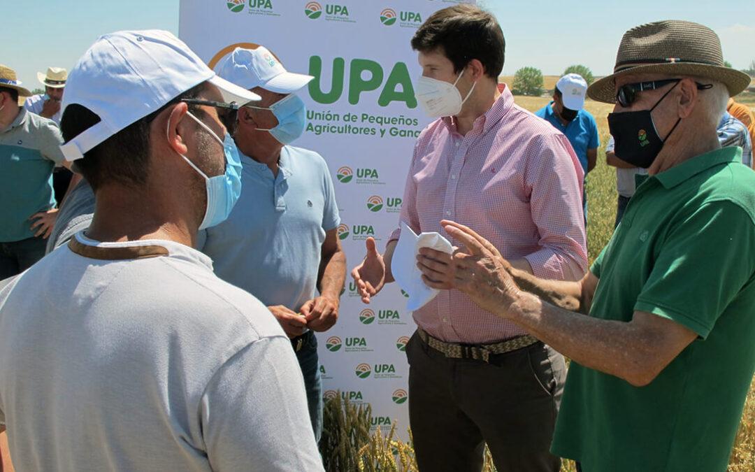 Campo de ensayo para trabajar contra el cambio climático donde la calidad de la semilla de cereal juega un papel trascendental