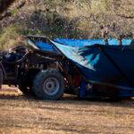 El sector de frutos secos sitúa la previsión de cosecha de almendra en las 84.000 toneladas, un 12% menos que la campaña anterior