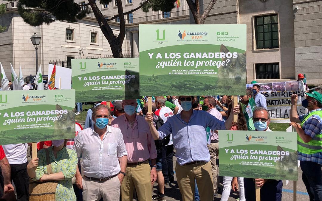 Unidad de todo el sector ganadero al convocar una concentración de protesta contra la ministra Teresa Ribera este viernes