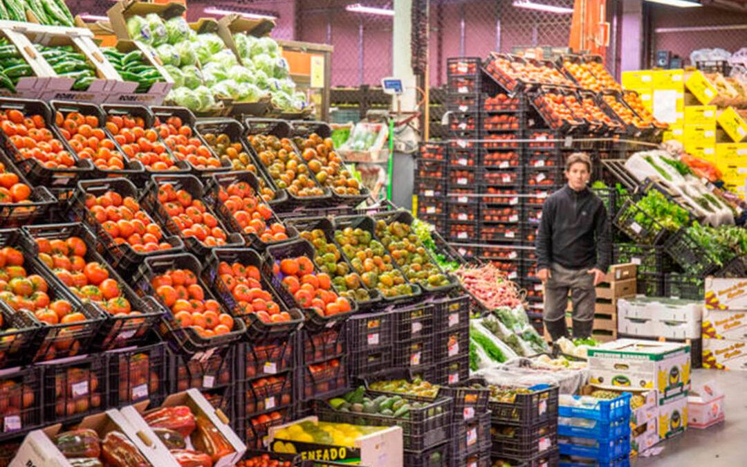 España y otros países europeos denuncian la entrada masiva de tomates y fruta de verano de Marruecos y Turquía