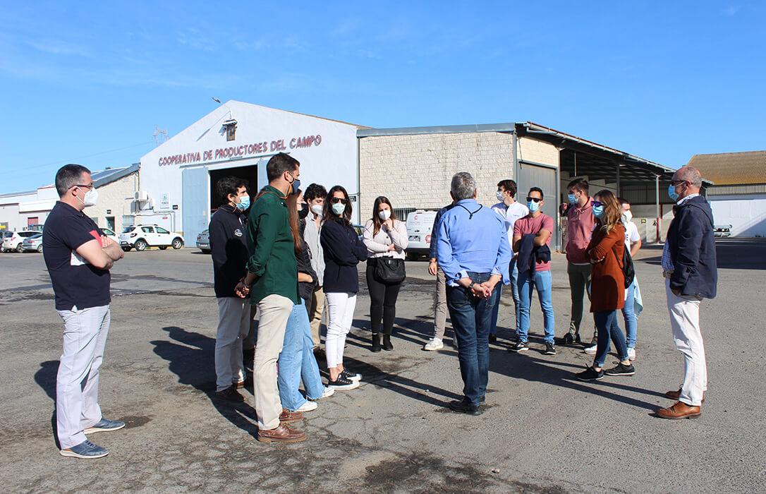 Universitarios andaluces estrenan su vida laboral en cooperativas agroalimentarias