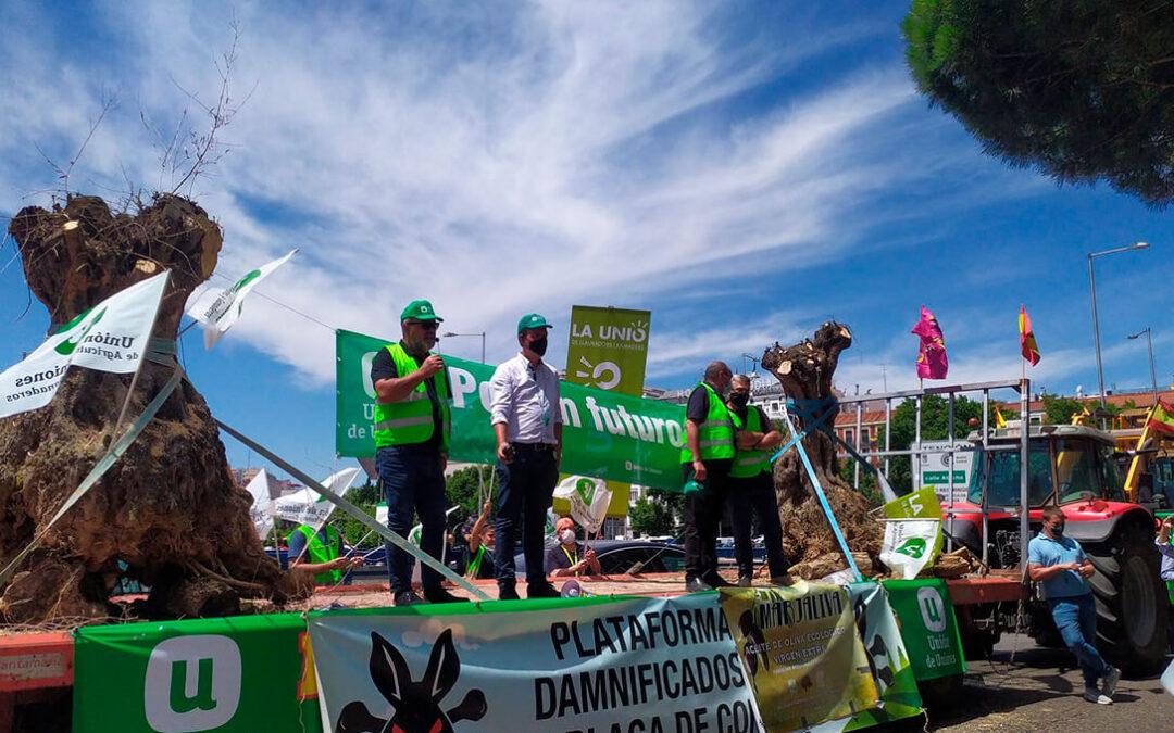 Protesta ante el Ministerio para exigir ayudas por Filomena, la vendimia en verde y una PAC para el agricultor profesional