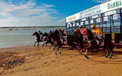 Barbadillo y las Carreras de Caballos en las playas de Sanlúcar, una apuesta segura para el verano del bicentenario