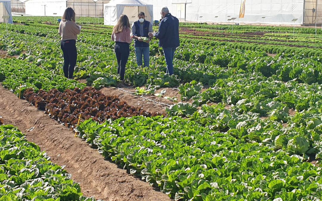 Murcia estima que subir caudal ecológico del Tajo reducirá un 30% la producción agraria de la Región