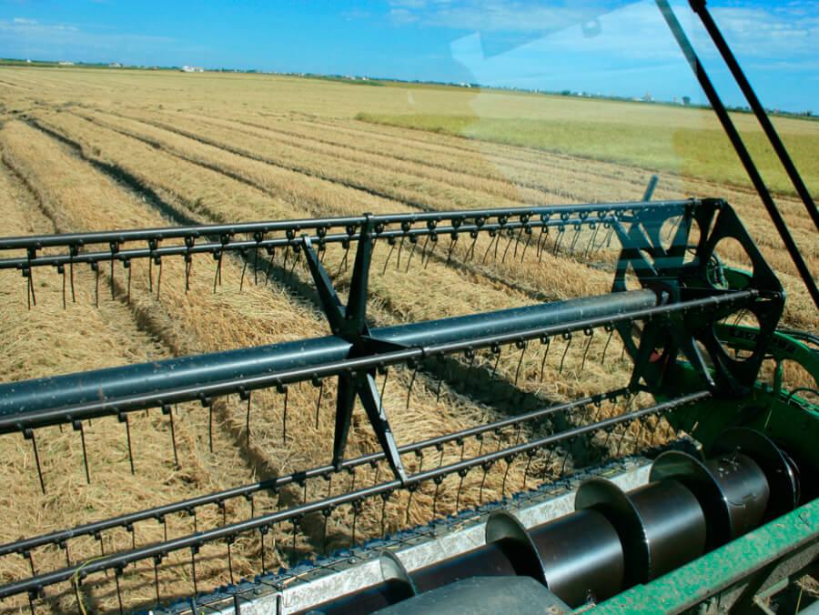 Habrá un recurso contra la prohibición de uso de cosechadoras en las horas centrales del día por el alto riesgo de incendios