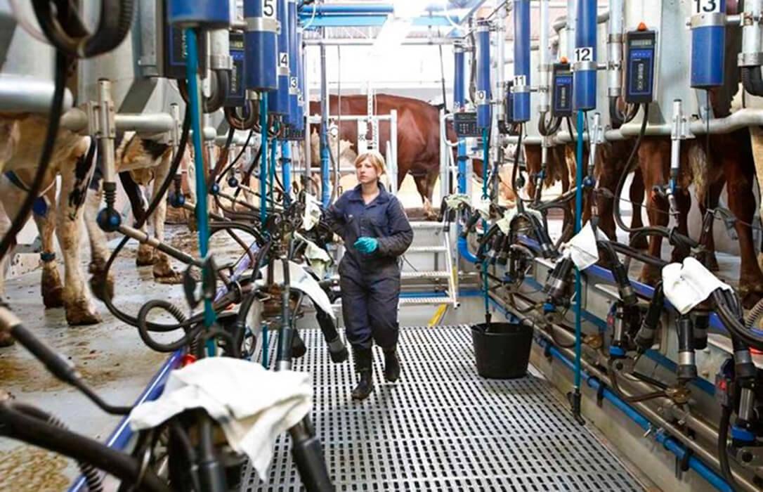 El sector ganadero lácteo inicia sus movilizaciones para evitar más cierres de granjas por el abuso de la distribución