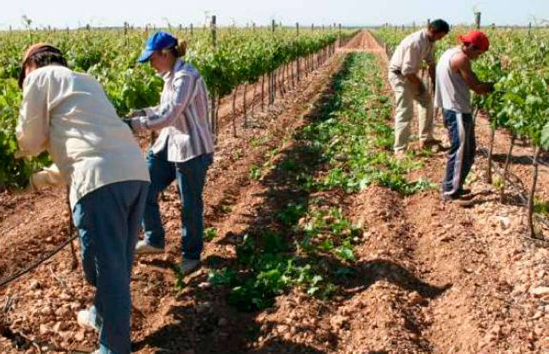 Acordado el convenio del campo para los próximos tres años en la provincia de Córdoba