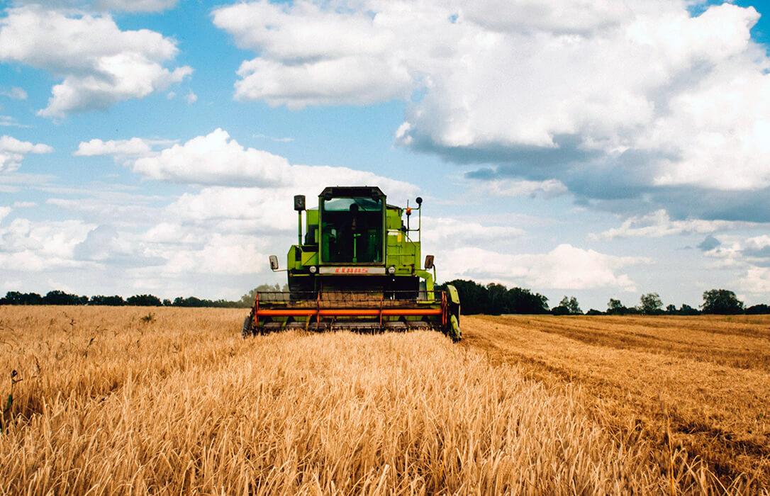 Debate del Plan Estratégico: El agricultor profesional sería el gran perdedor de la aplicación de la nueva PAC en España