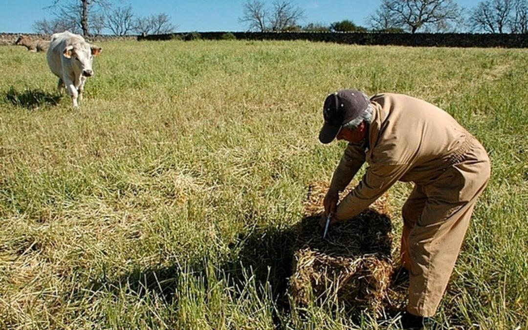El agricultor activo de Planas: No profesional, dado de alta como autónomo e ingresos agrarios de entre el 10 y el 70% según la CCAA