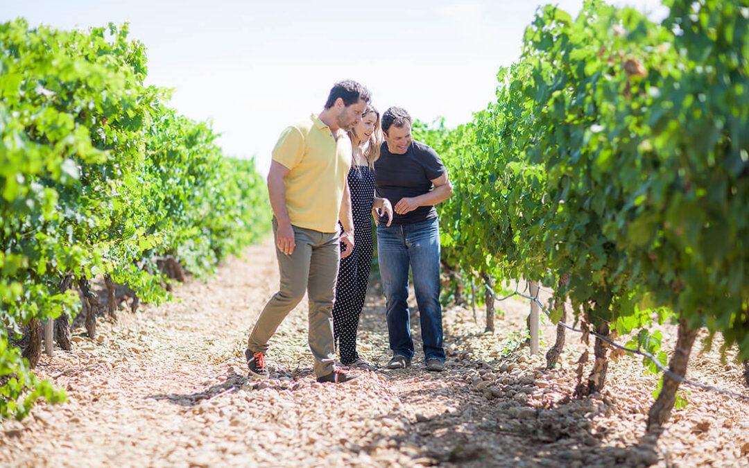Bodegas Menade inicia la 201 vendimia de la familia Sanz al frente de estos viñedos de la DO Rueda