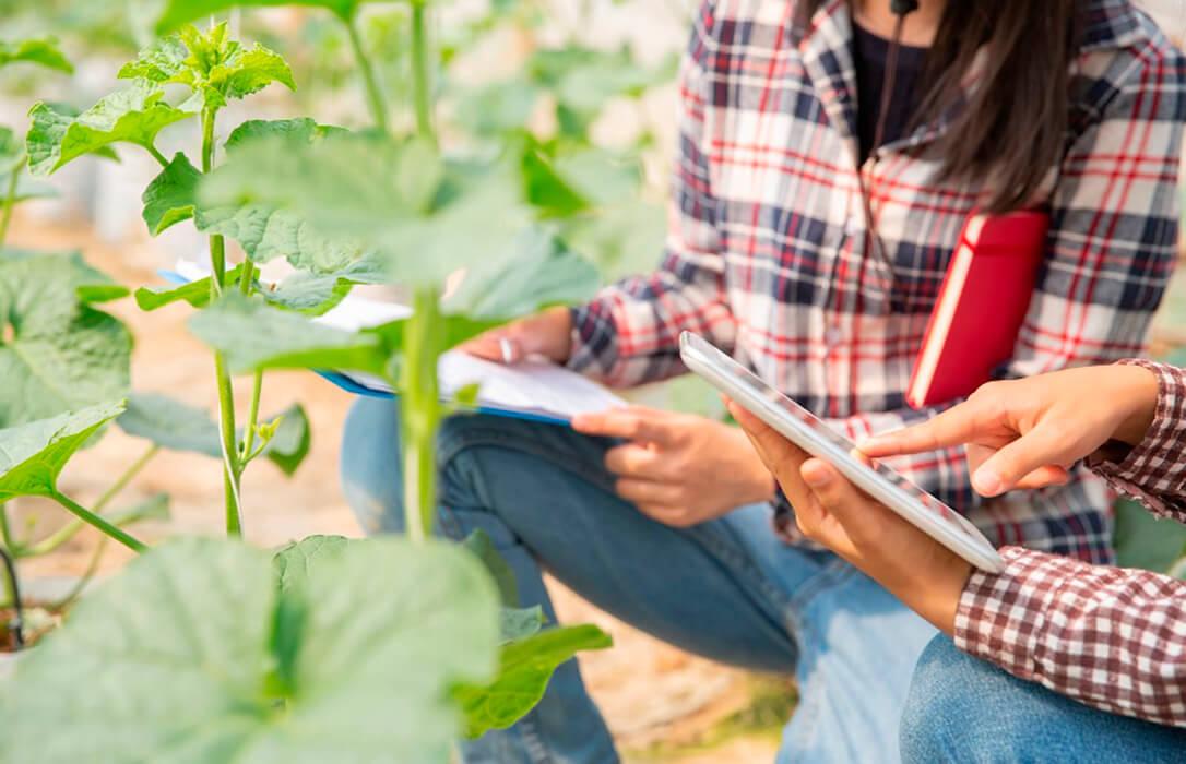Ampliado el plazo para las solicitudes a la organización de estancias formativas para jóvenes agricultores y ganaderos