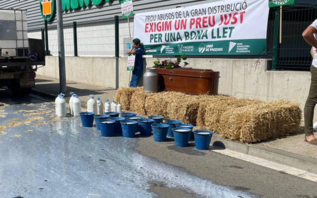 Crisis por el precio de la leche: Exigen que la industria compense a los ganaderos por no cubrir los costes de producción