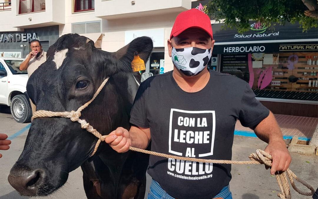 Protestas de la leche: La solidaridad asoma en las movilizaciones en Cádiz al regalar 500 litros a Cáritas