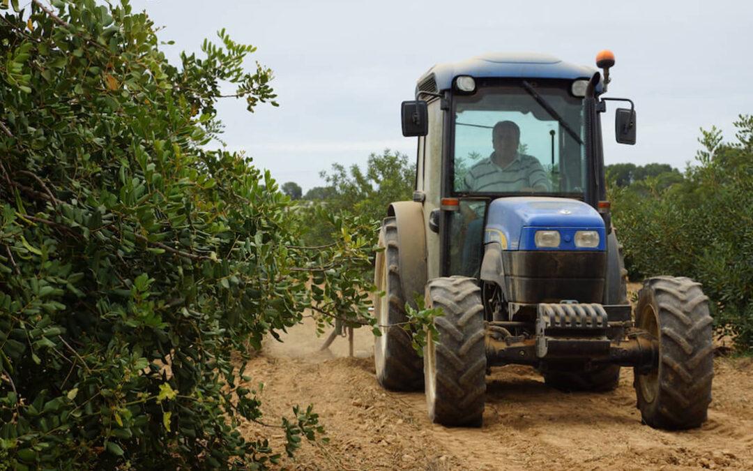 Agricultor activo: Con la definición del Gobierno podría haber reducciones entre un 20 y un 80% respecto a las ayudas actuales
