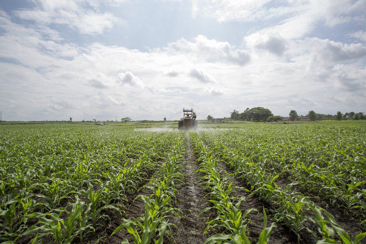 La nueva guerra de Andalucía ante la PAC: Quiere que se iguale el número de regiones agroecológicas a las productivas