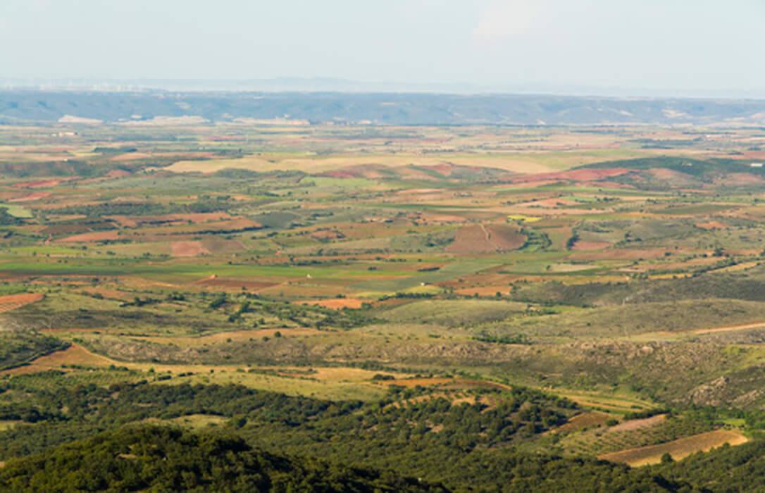 Bruselas concede mil millones adicionales a España en política de cohesión, lo que amplía los programas de desarrollo rural