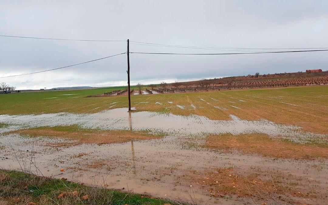 El cambio climático lo está alterando todo y, por eso, piden que también deben cambiar los seguros agrarios