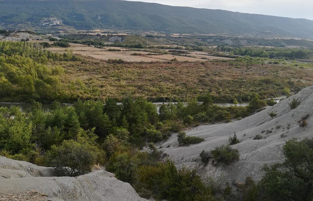 Queja oficial por una deforestación de la CHE que conlleva la destrucción de la red Natura 2000 en el río Aragón