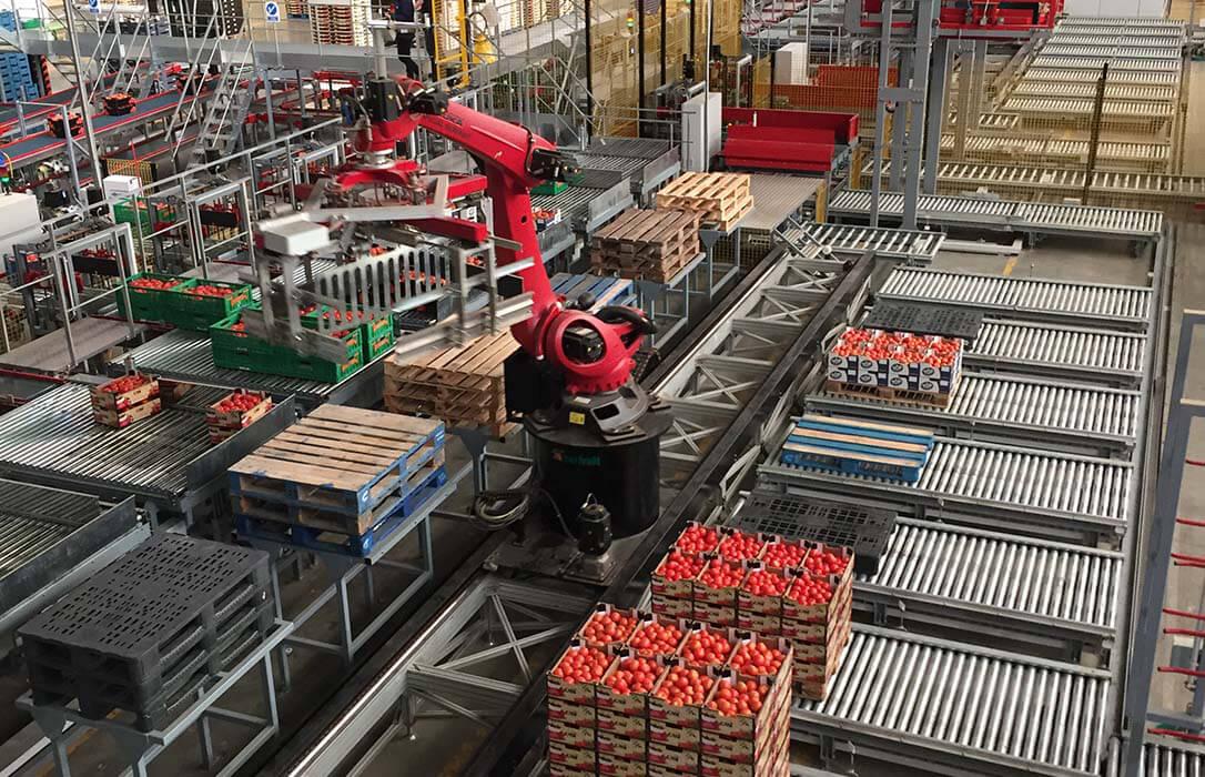 El sector hortofrutícola celebra el retraso en la exigencia del certificado fitosanitario para los envíos al Reino Unido