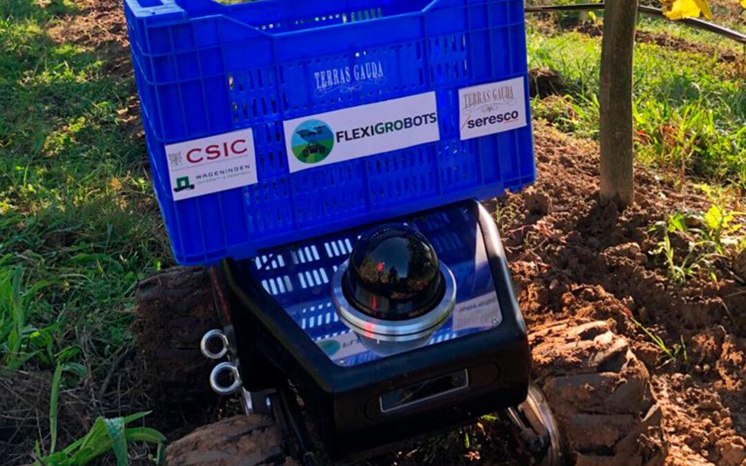 FlexiGroBots: El primer ensayo de proyecto europeo de inteligencia artificial y robótica en el viñedo en el arranque de la vendimia
