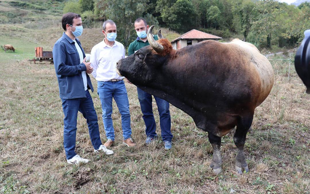 Los ganaderos asturianos reprochan al ministro Garzón que acuda a salir en la foto después de pedir que no se consuma carne