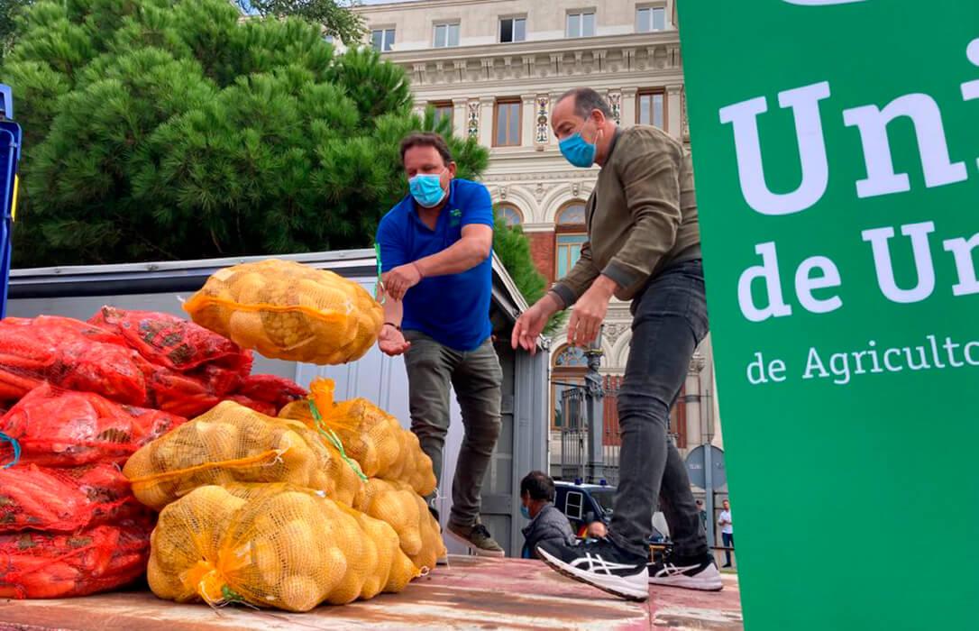 Protesta a las puertas del Ministero en defensa de un Plan Estratégico que ponga su foco en la figura del agricultor profesional