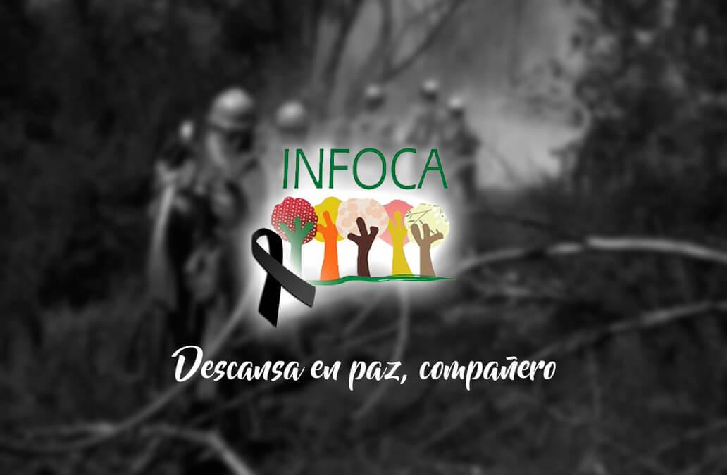 El peor suceso del año: Un bombero forestal fallecido y 2.200 hectáreas quemadas en el incendio de Sierra Bermeja