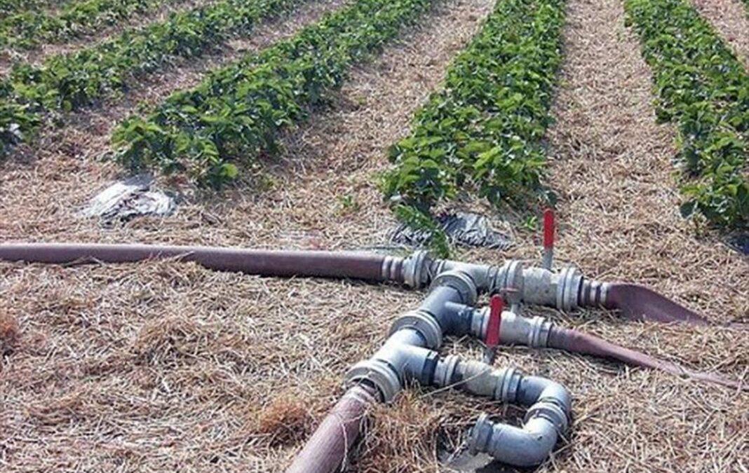 La Mesa del Agua andaluza reclama un precio máximo de 30 céntimos por metro cúbico para el agua desalada para regadío