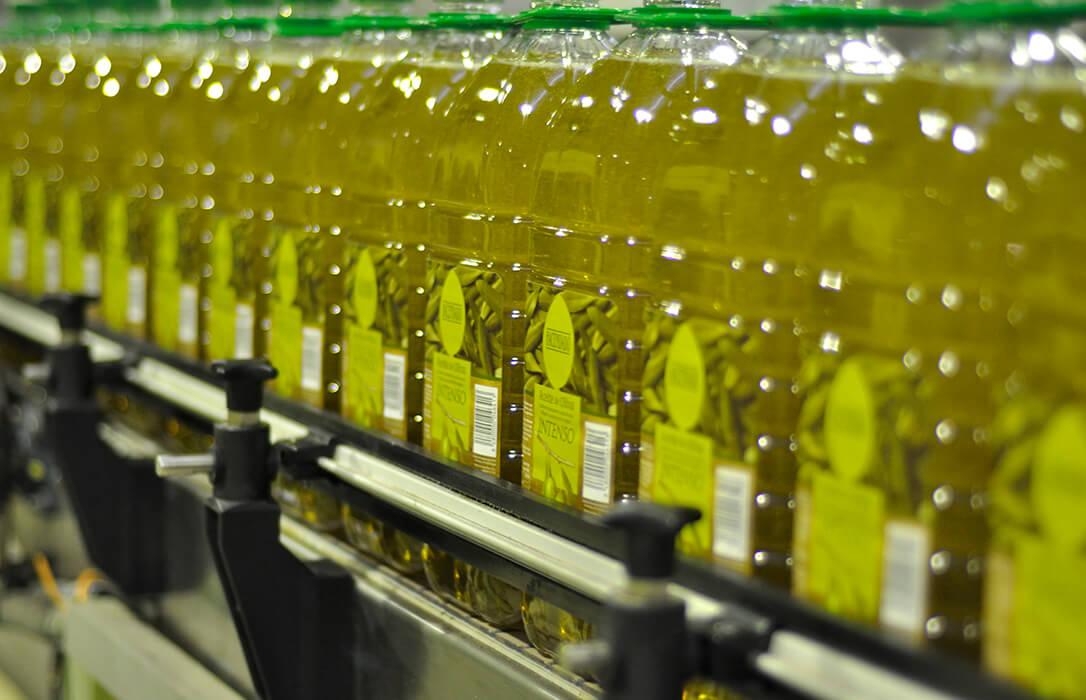 Los envasadores de aceite de oliva cierra la campaña con la venta de 320 millones de litros, casi un 7% menos que el año anterior