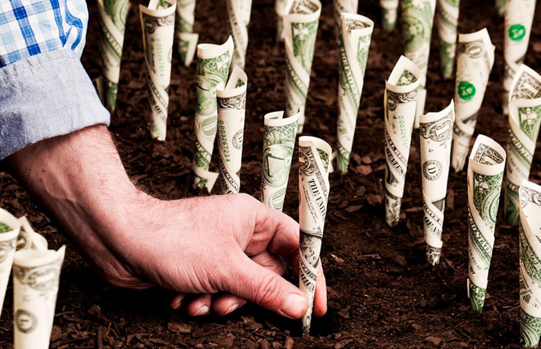 El anticipo de las ayudas directas de la PAC dejará desde el lunes hasta 3.350 millones de euros a agricultores y ganaderos