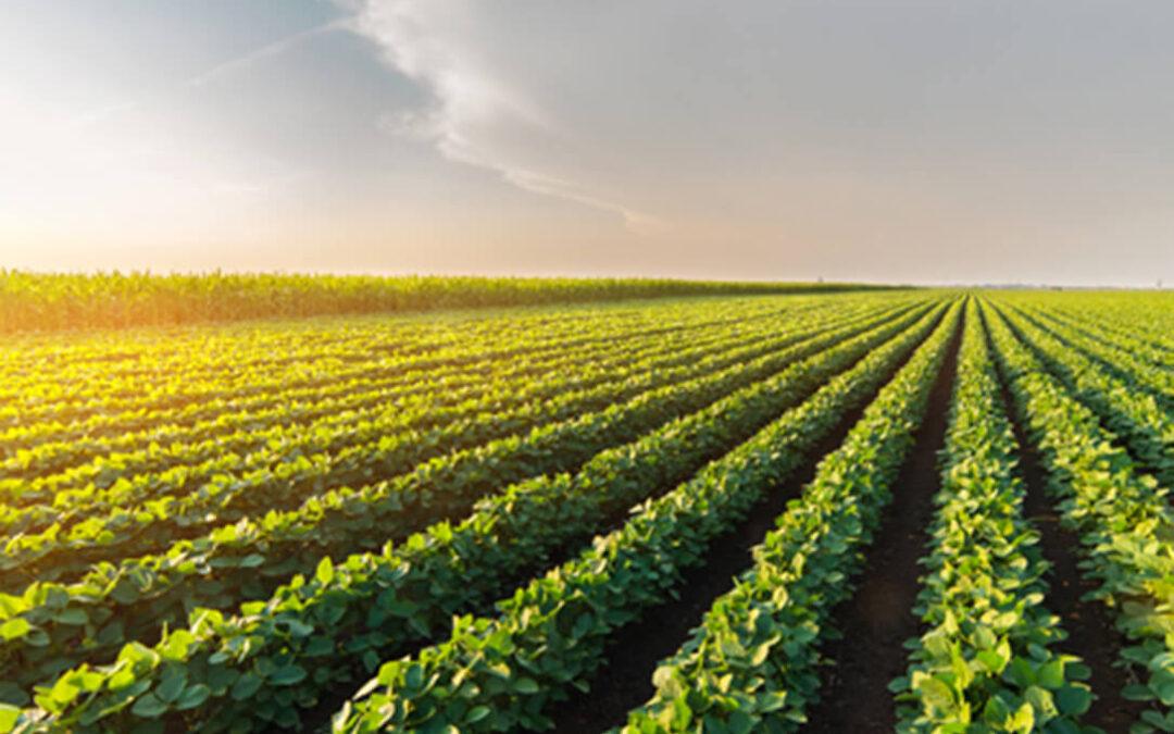 Siete startups europeas de agritech presentan sus proyectos en un foro de inversión del IESE