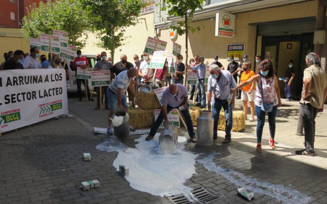 Se mantendrán las movilizaciones ante Mercadona y otros grandes operadores ante la subida irrisoria del precio de la leche