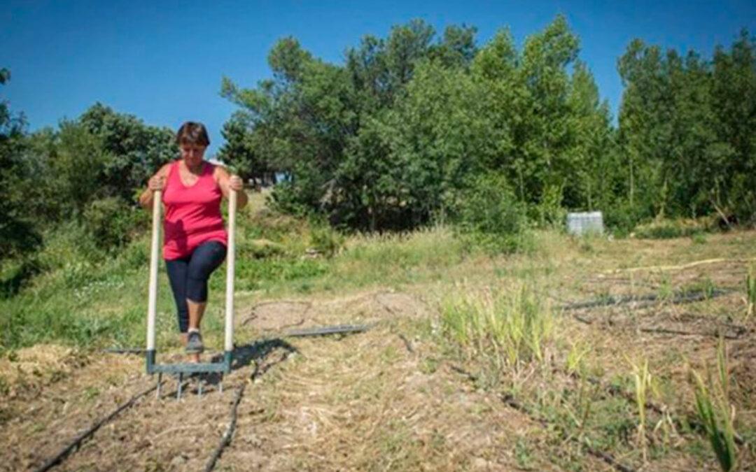 Lo que va a cambiar: Las siete prácticas sostenibles propuestas para cobrar los ecoesquemas de la PAC