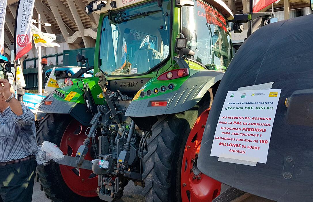 Enfado con el acuerdo de la PAC: El sector agrario lamenta el menosprecio de Luis Planas al campo andaluz al avanzar con su Plan Estratégico
