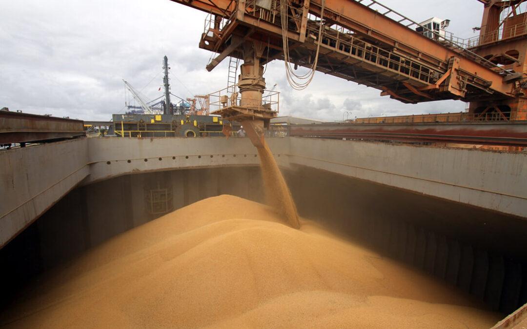 Bajan las existencias de trigo en EEUU y las exportaciones de Canada y se dispara el rally alcista en los precios de los cereales