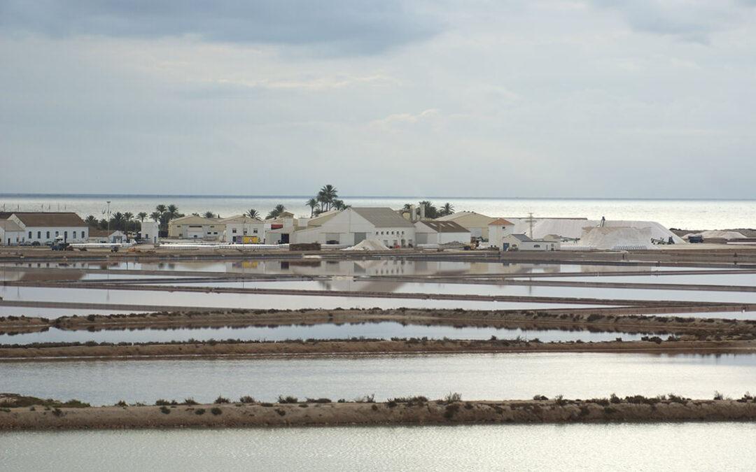 Denuncian las incoherencias en el reglamento europeo sobre la producción ecológica de sal