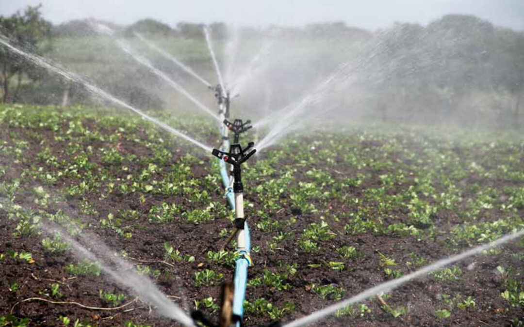 Consideran que las recomendaciones del Tribunal de Cuentas de la UE sobre el uso de agua están basadas en un contexto sesgado