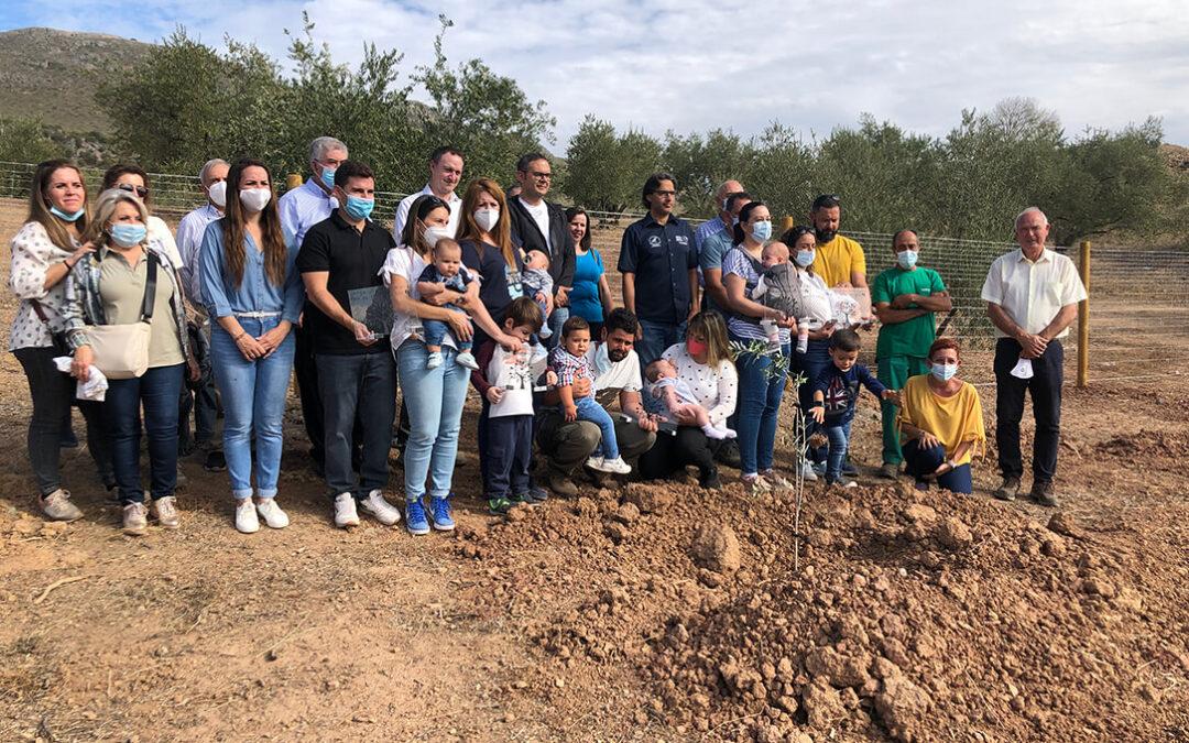 'Un nacimiento, un olivo', la apuesta de las almazaras de la Subbética por la protección de las variedades autóctonas