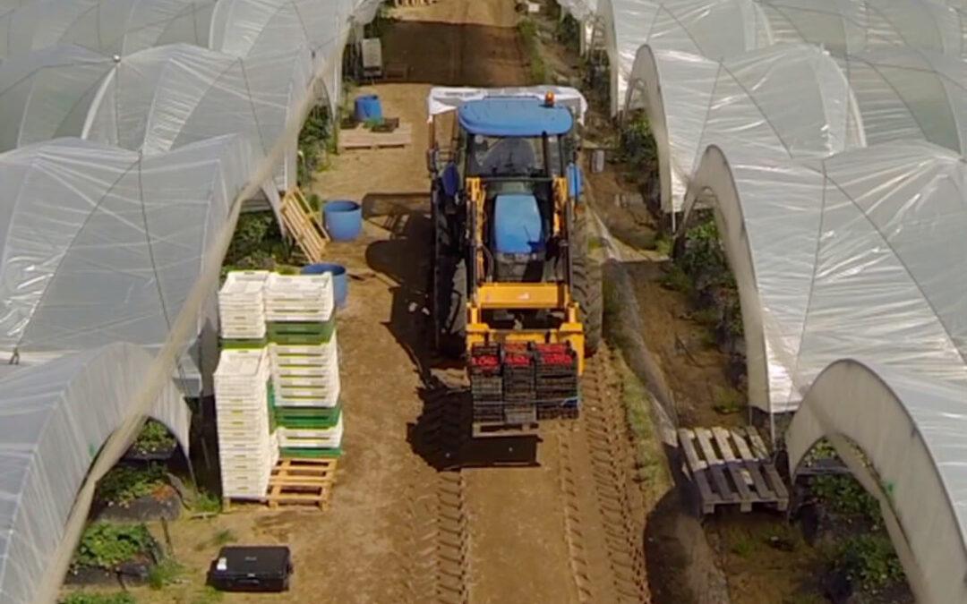 El campo exige que si las grandes marcas y fabricantes suben los precios sea porque le pagarán un precio mayor a los agricultores y ganaderos